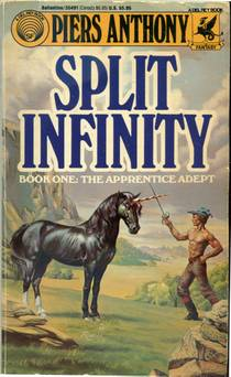 Picture of a book: Split Infinity