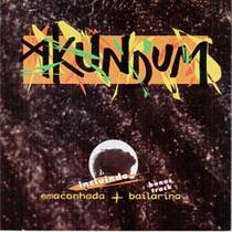 Picture of a band or musician: Akundum