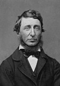 Picture of an author: Henry David Thoreau