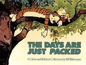 Picture of a book: The Days Are Just Packed