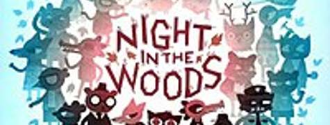 Image of Night In The Woods