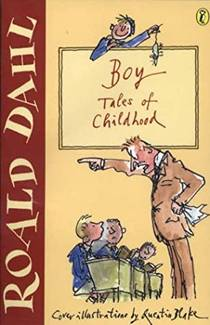 Picture of a book: Boy: Tales Of Childhood