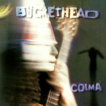Picture of a band or musician: Buckethead