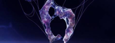 Image of Resident Evil 6