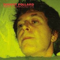 Picture of a band or musician: Robert Pollard