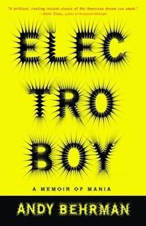 Picture of a book: Electroboy: A Memoir Of Mania