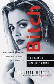Picture of a book: Bitch: In Praise Of Difficult Women