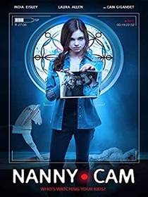Picture of a movie: Nanny Cam