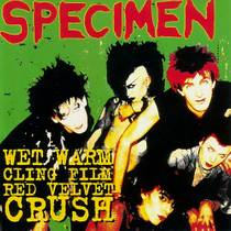 Picture of a band or musician: Specimen
