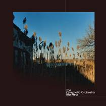 Picture of a band or musician: The Cinematic Orchestra