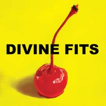 Picture of a band or musician: Divine Fits