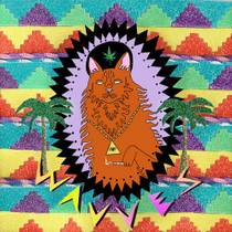 Picture of a band or musician: Wavves
