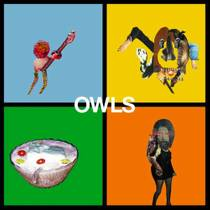 Picture of a band or musician: Owls