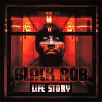 Picture of a band or musician: Black Rob