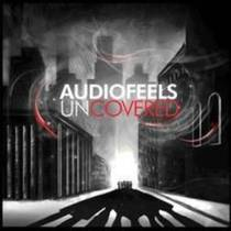 Picture of a band or musician: Audiofeels