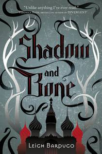 Picture of a book: Shadow And Bone