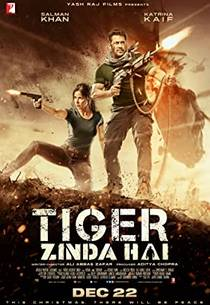 Picture of a movie: Tiger Zinda Hai
