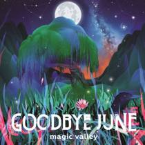 Picture of a band or musician: Goodbye June