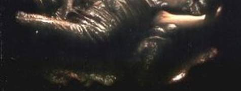 Image of Alien Resurrection