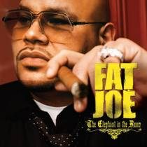 Picture of a band or musician: Fat Joe